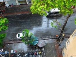Saigon's Rain in June