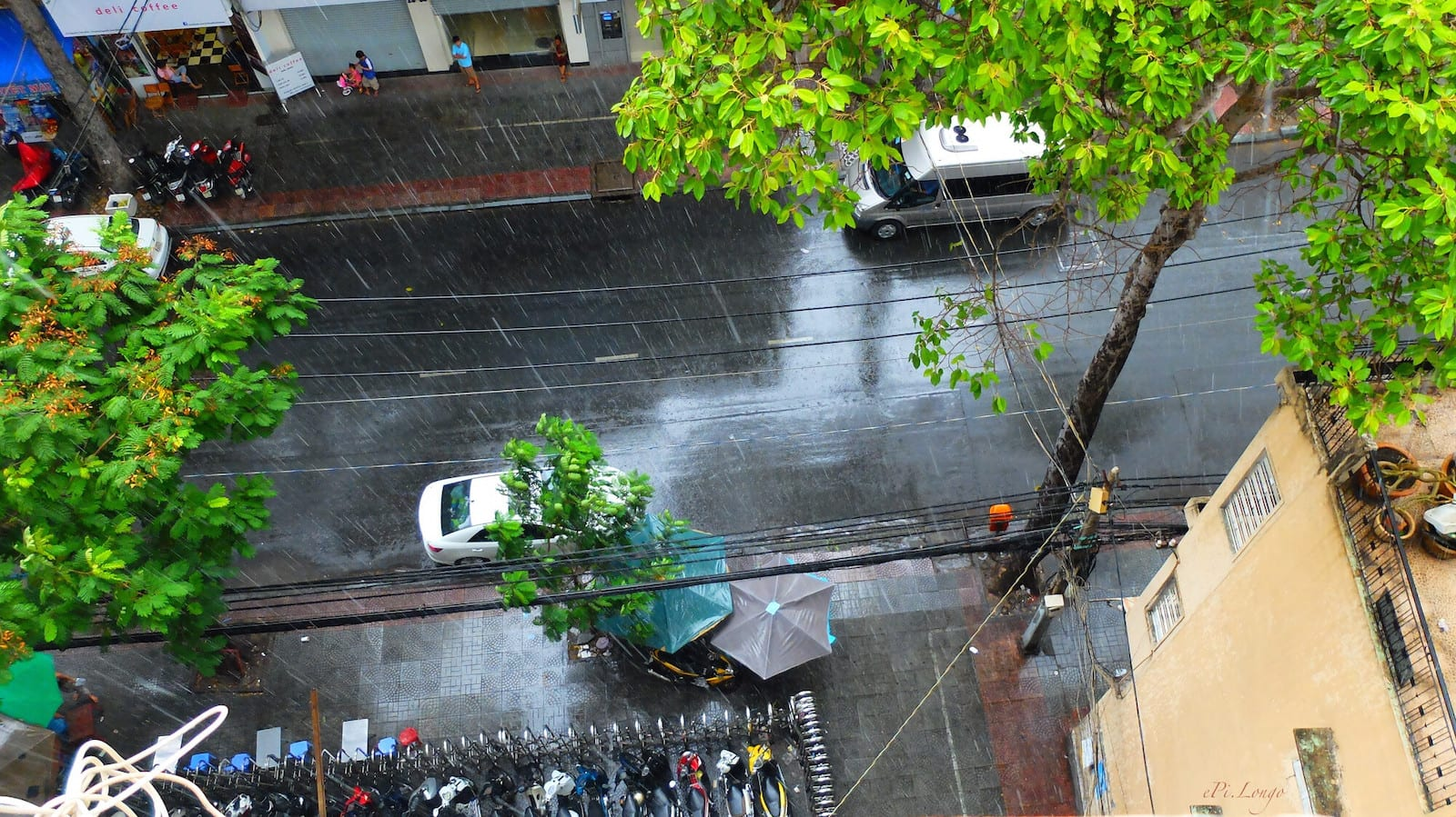 Saigon's Rain in June