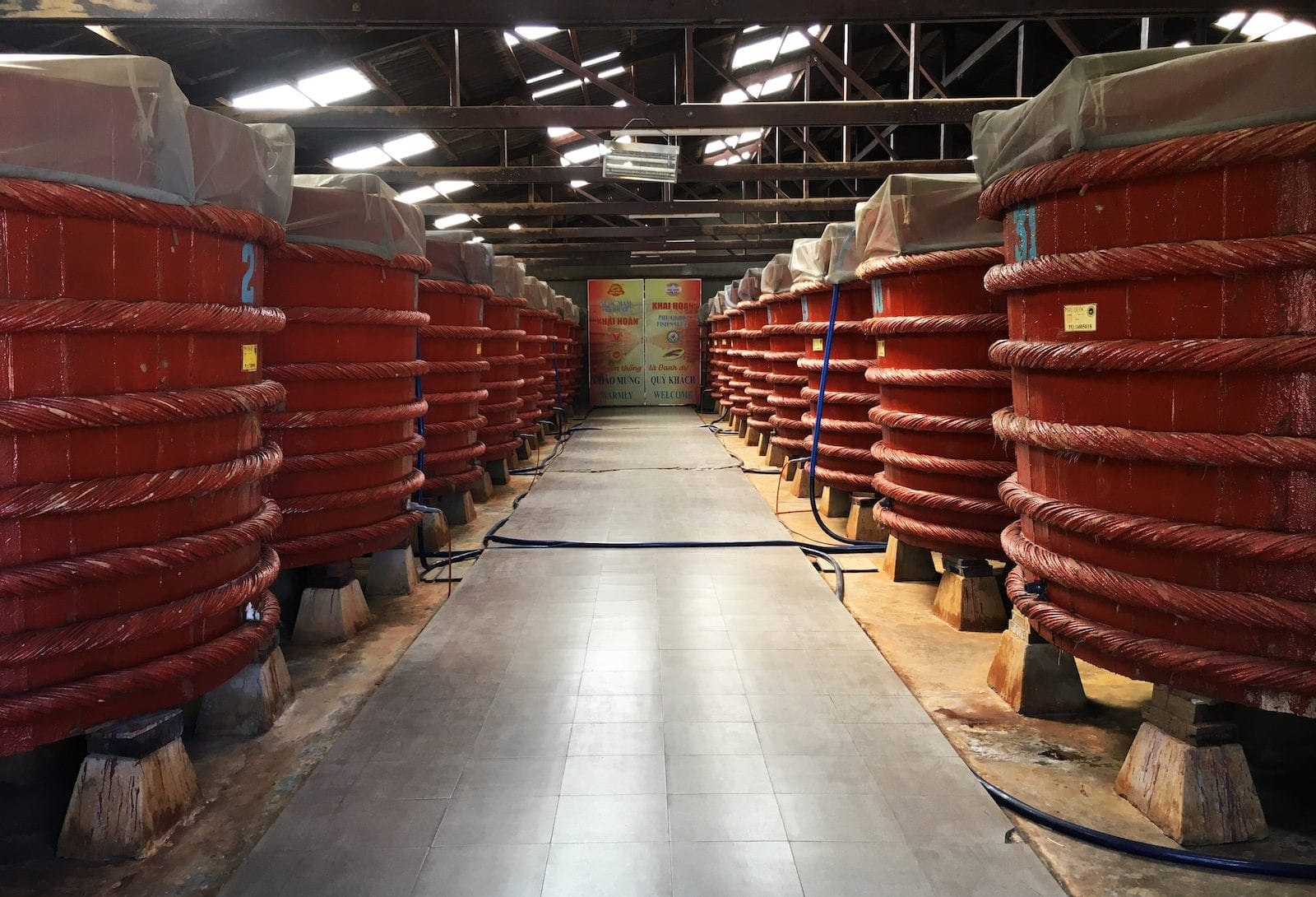 Vats of Fish Sauce at Fish Sauce Factory, Phu Quoc