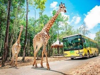 VinPearl Safari Phu Quoc