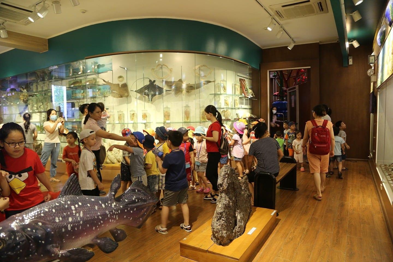 Image of kids exploring the Vietnam History Museum in Ha Noi