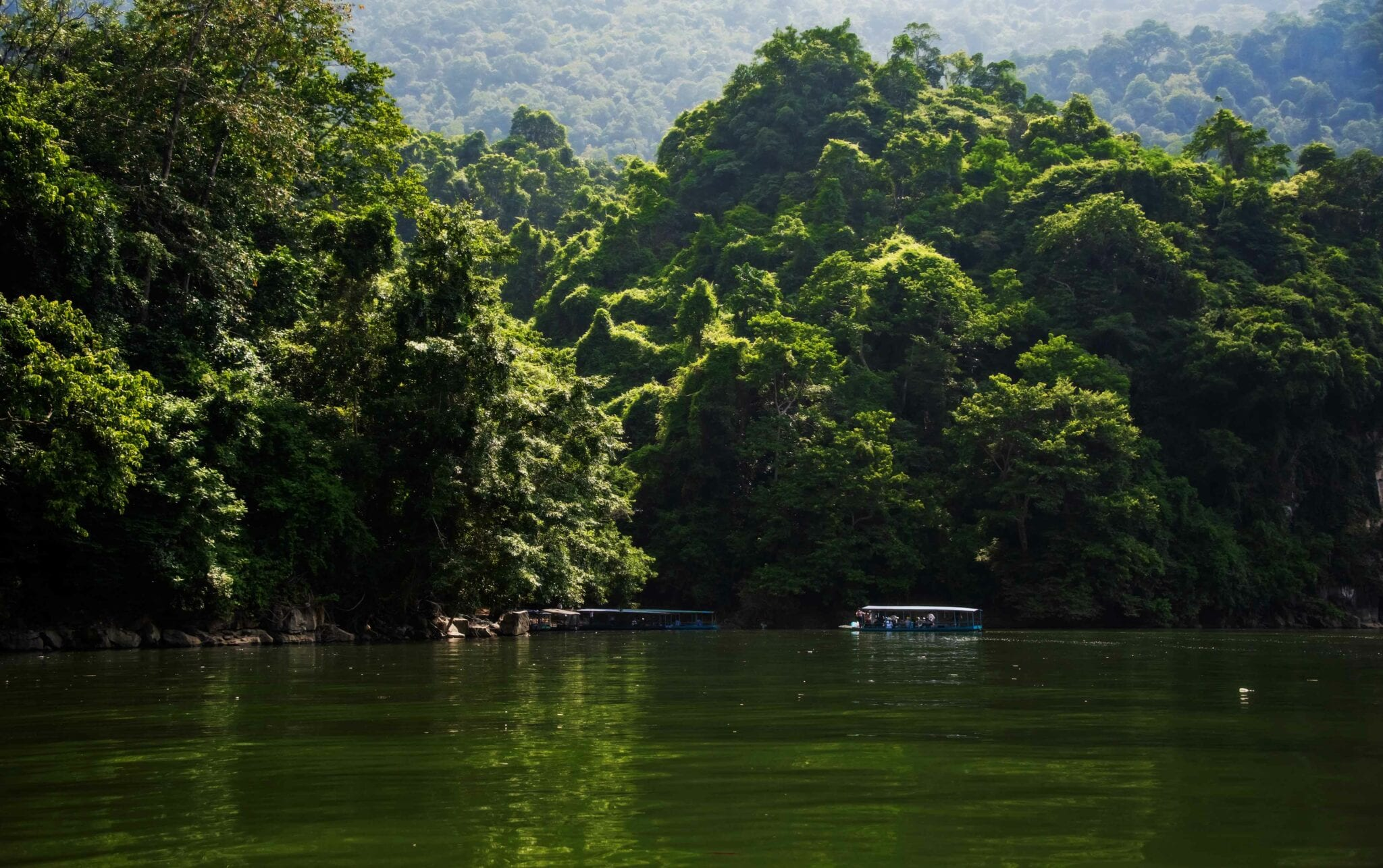Image of the jungle behind the lake in Ba Bê National Park in Vietnam