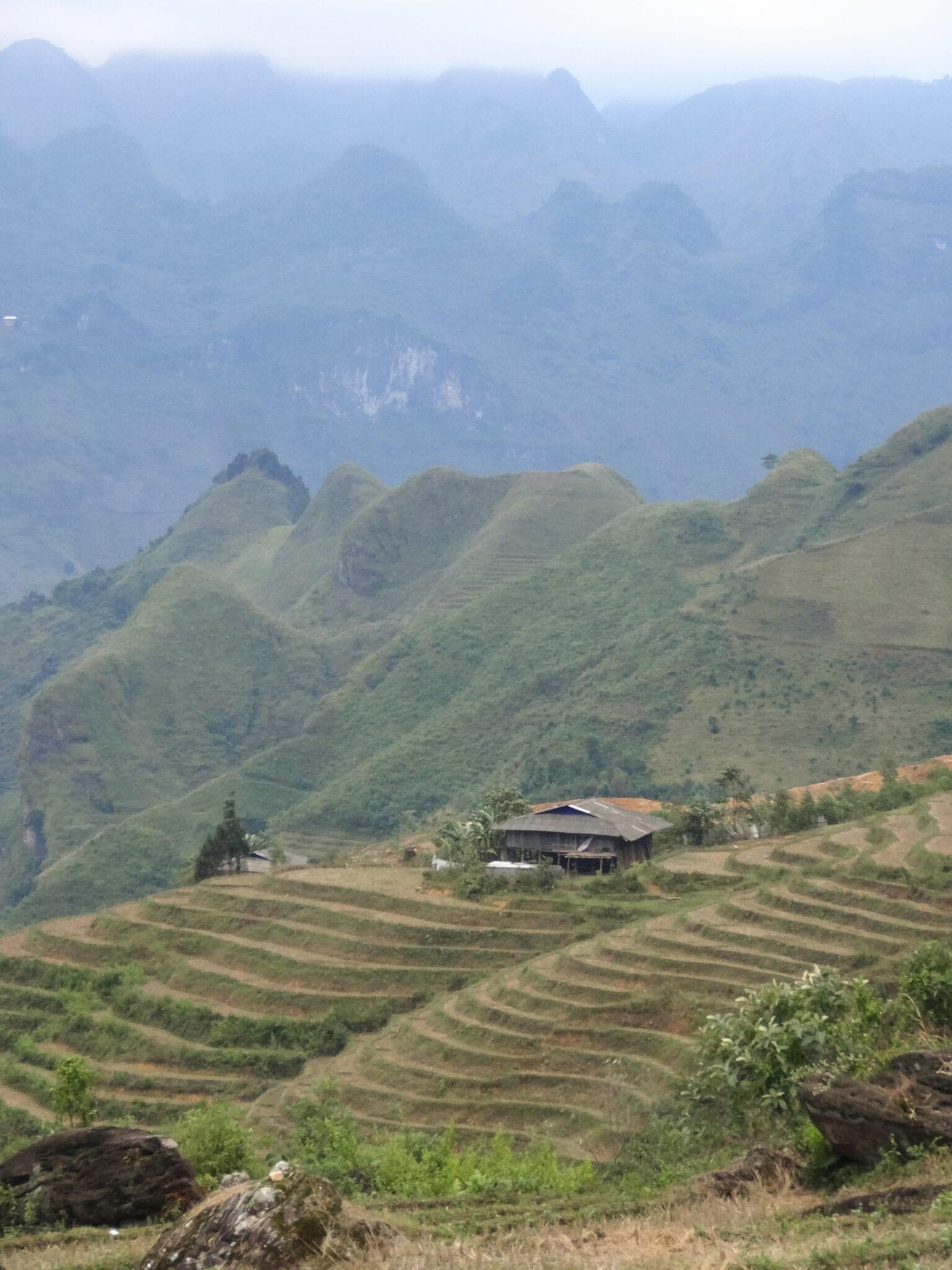 Rice Paddies in Du Gia Northern Vietnam