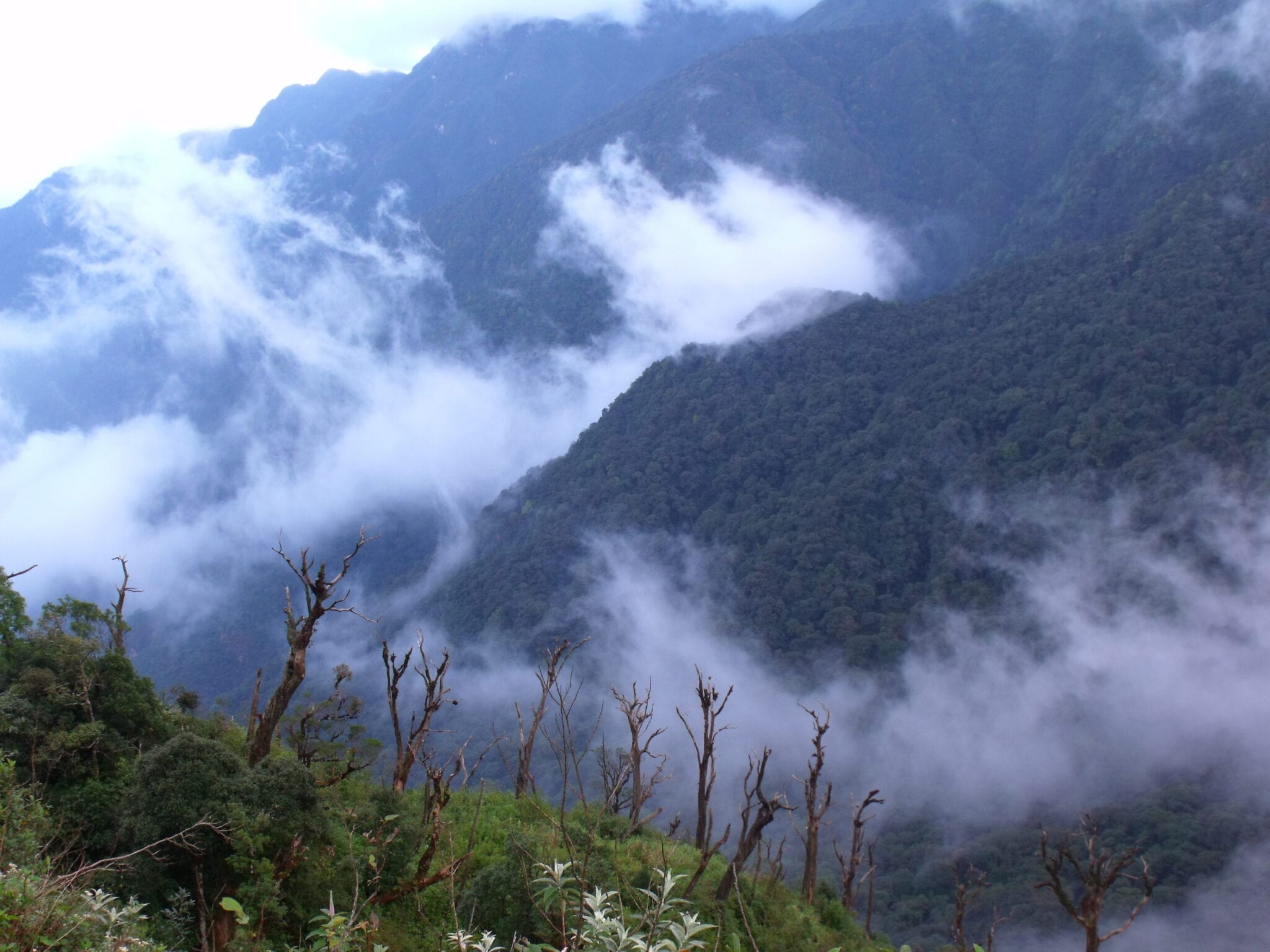 Image of the Mountains in Hoàng Liên National Park in Vietnam