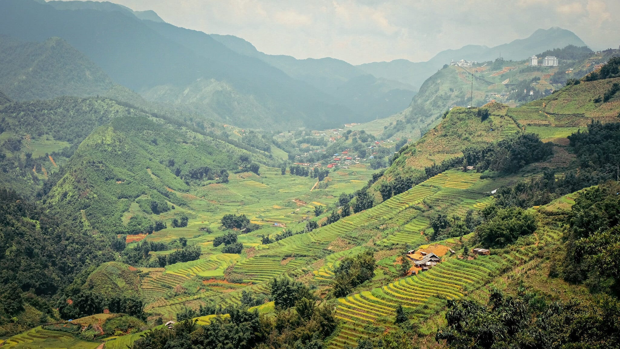 Image of the rice paddy fields and valley in Sapa, Vietnam