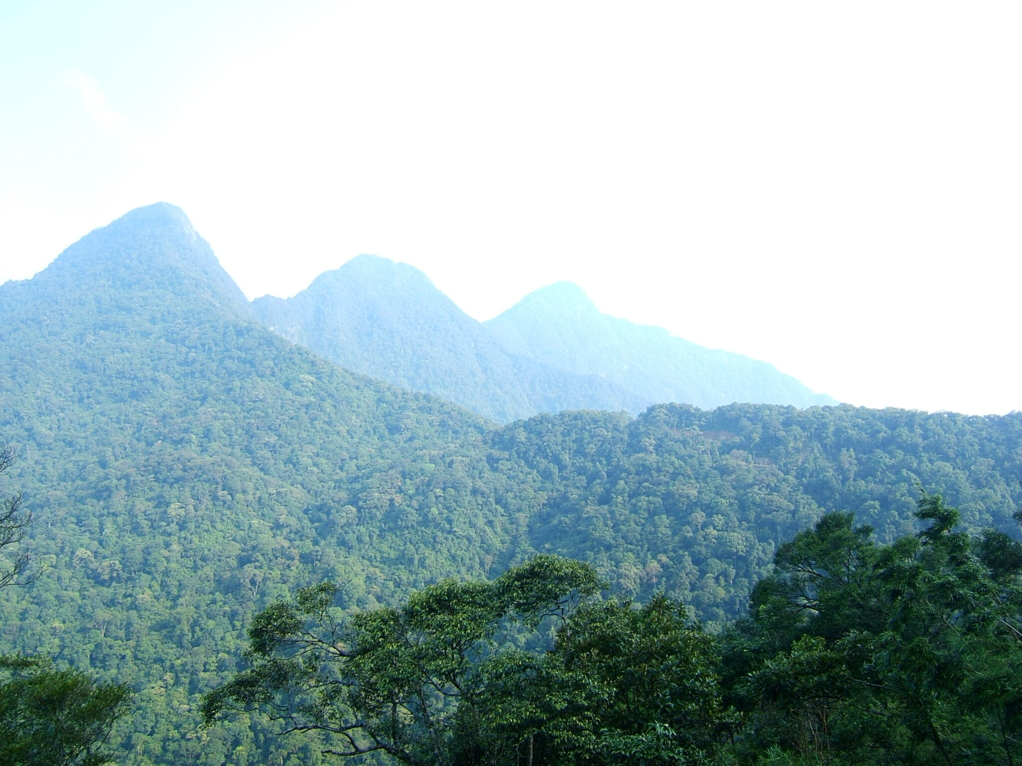 Mountains in Tam Dao Vietnam