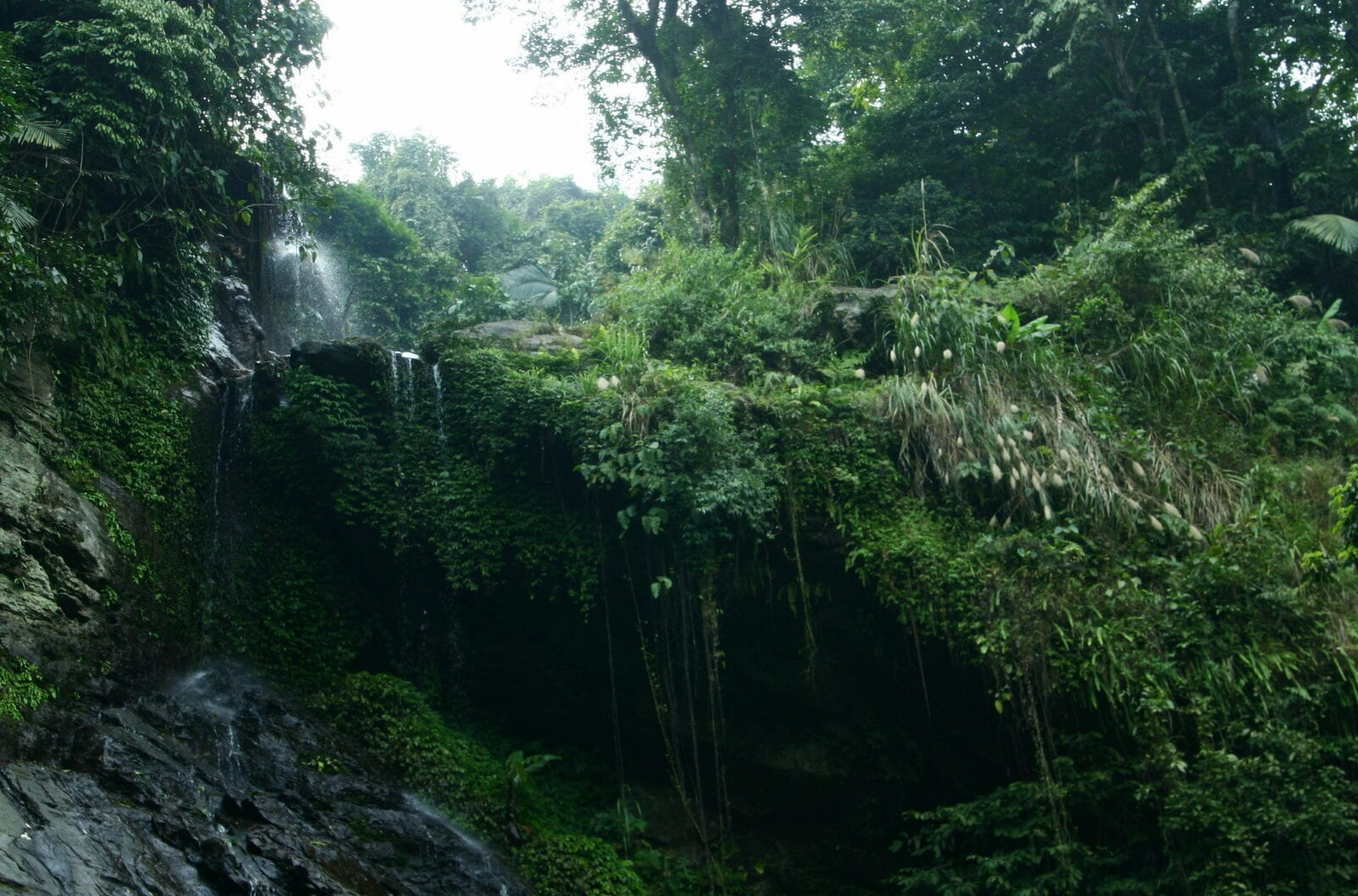 Image of a waterfall in the Ba Vi National Forest in Vietnam