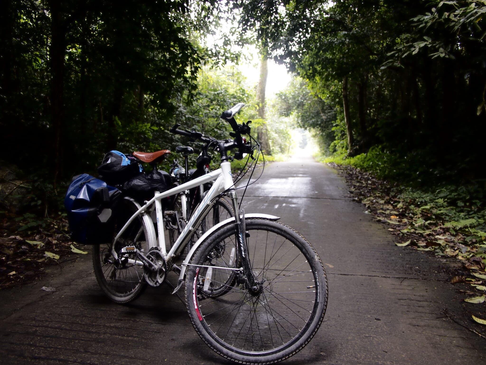 Bike Path in Cuc Phuong National Park Vietnam