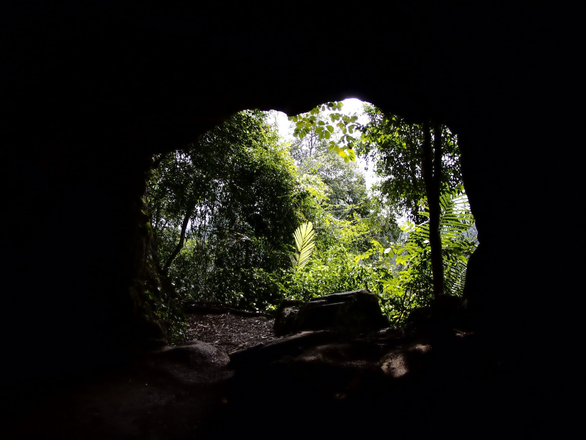 Cave Entrance in Cuc Phuong National Park Vietnam