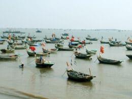 Fishing Boats in Xuân Thuy National Park Vietnam