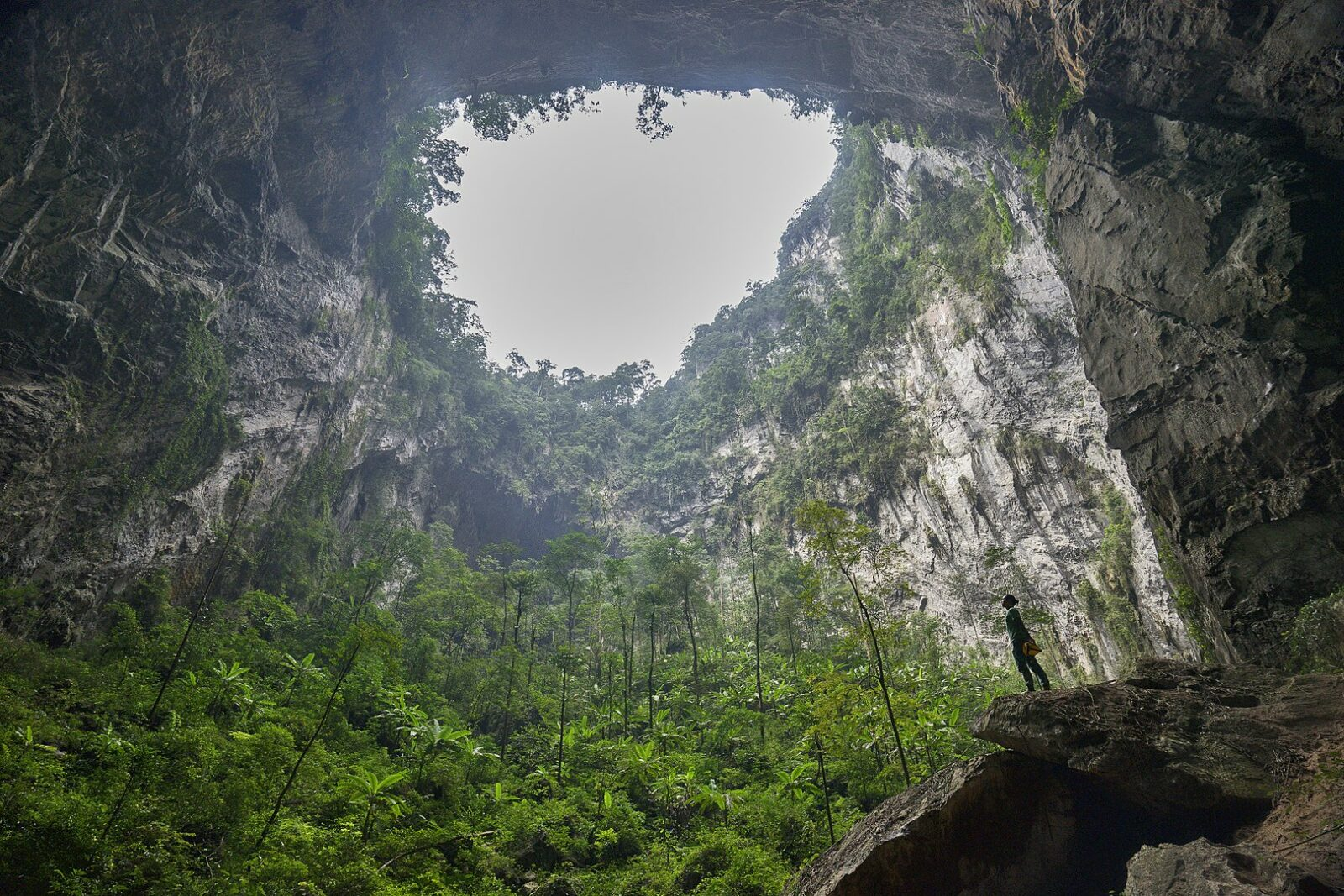 Image of the second doline in the hang son doong (cave) in Quang Binh, Vietnam