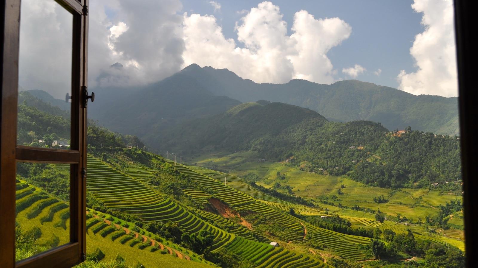 Sapa Valley Rice Field