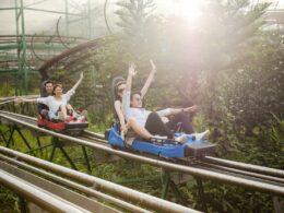 Image of the Sun World Ba Na Hills alpine coaster in Vietnam