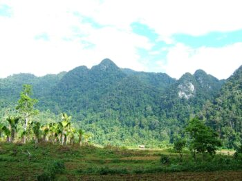 Image of a lush green landscape at Xuan Son National Forest in Vietnam