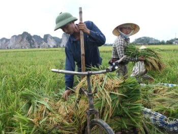 Image of a farming couple in Thanh Hoa Province, Northern Vietnam