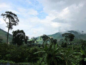 Hiking in Phuoc Bình National Park Vietnam