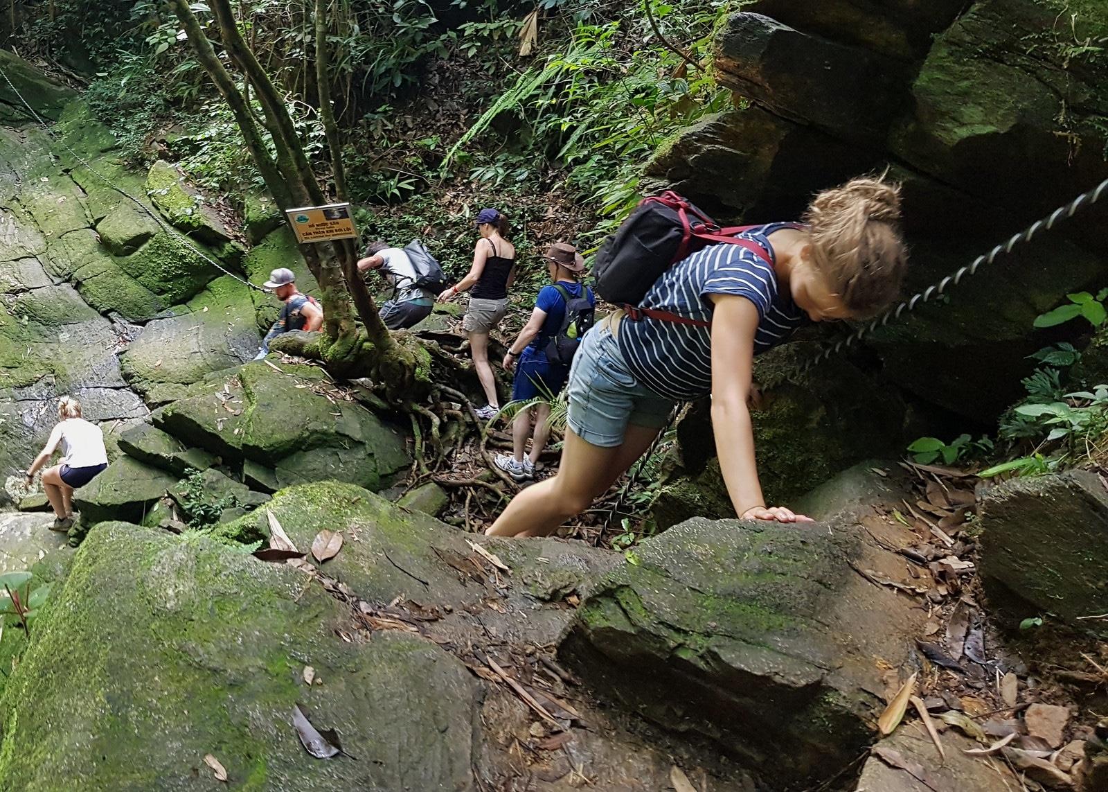 Hiking in Bach Mã National Park Vietnam