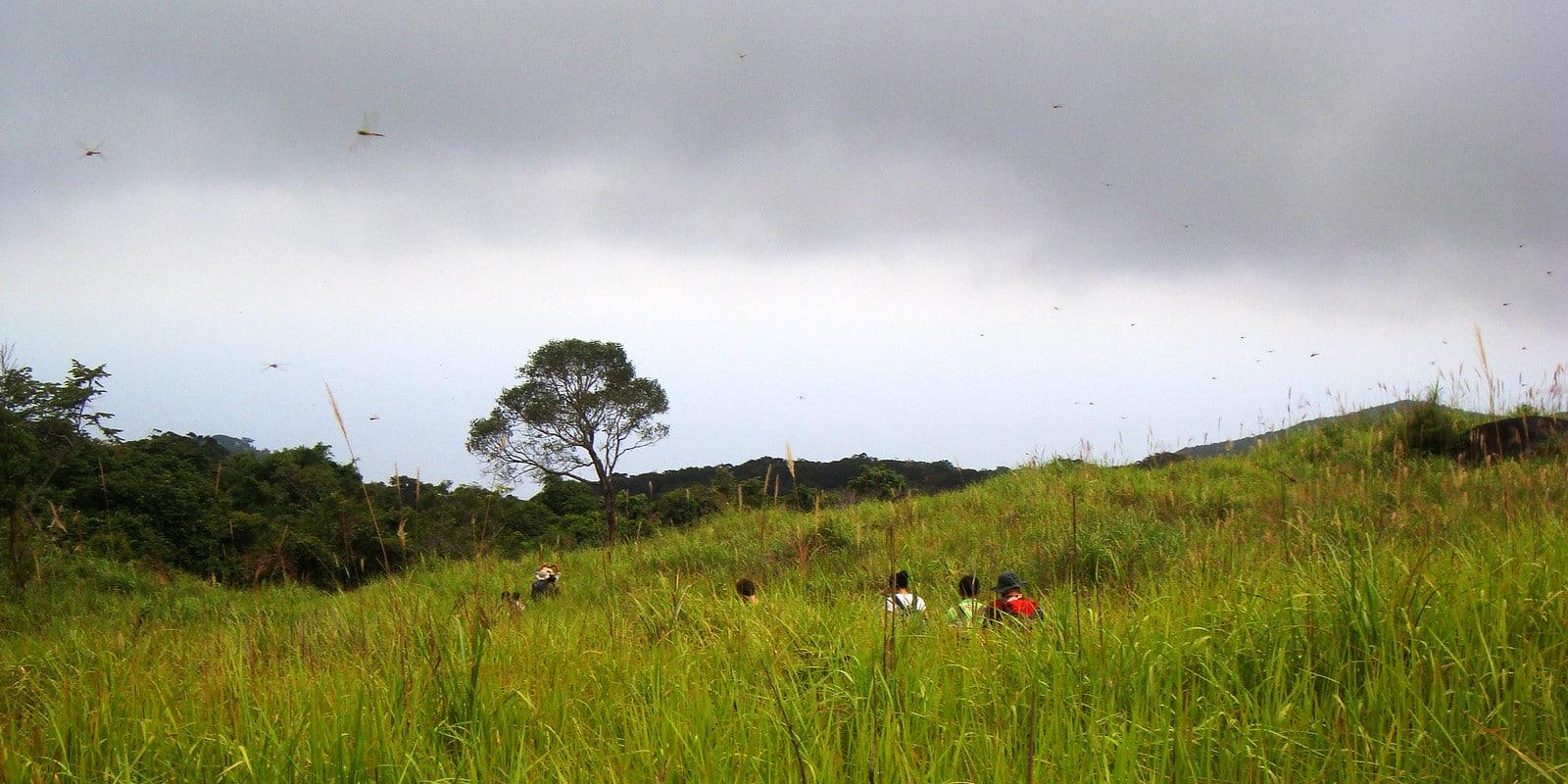 Hiking in Núi Chúa National Park Vietnam