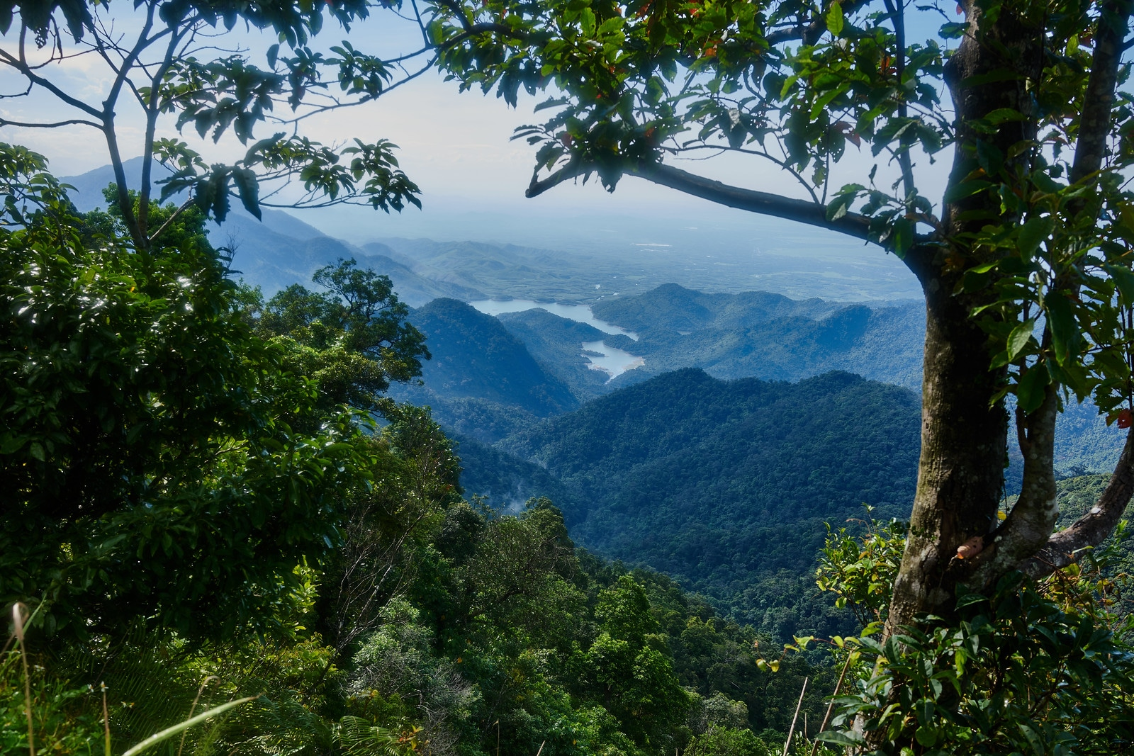 Overview of Bach Ma National Park Vietnam
