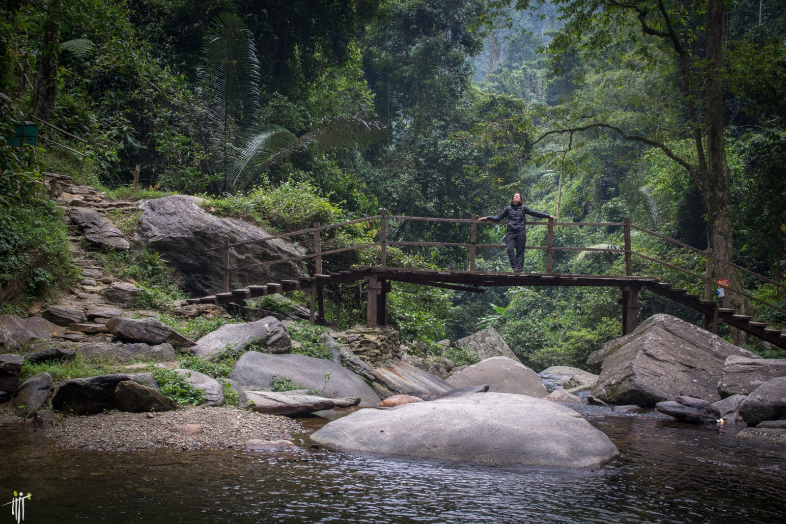 Image of a woman on a bridge in the Pu Mat National Park in Vietnam