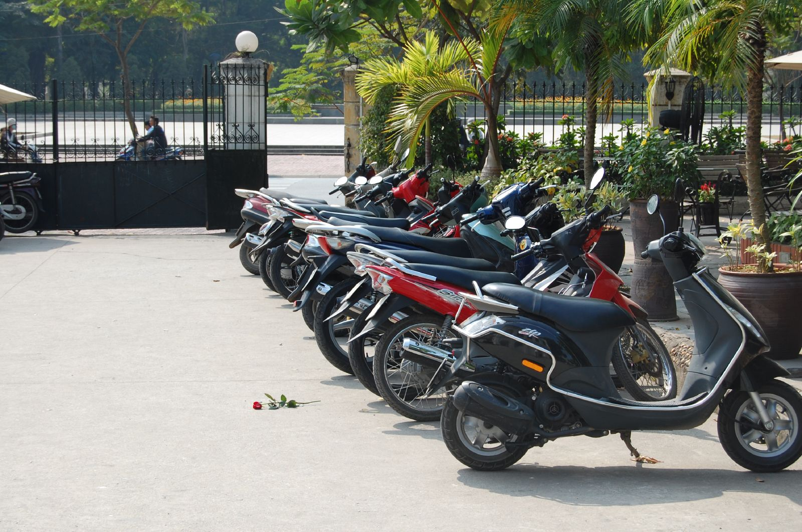 Image of a row of motorbikes in Vietnam