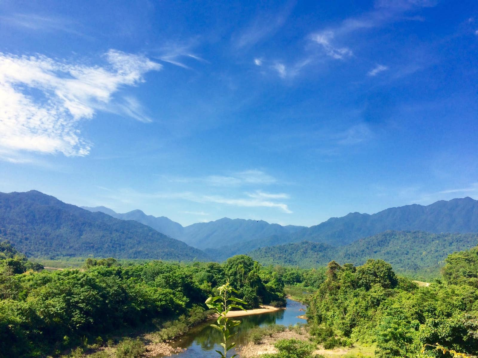 Image of the Annamese Mountains in Vu Quang National Park. Photo: Vu Quang National Park