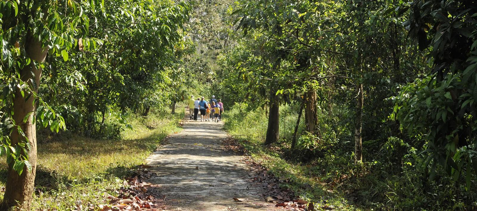 Hike in Cat Tien National Park Vietnam