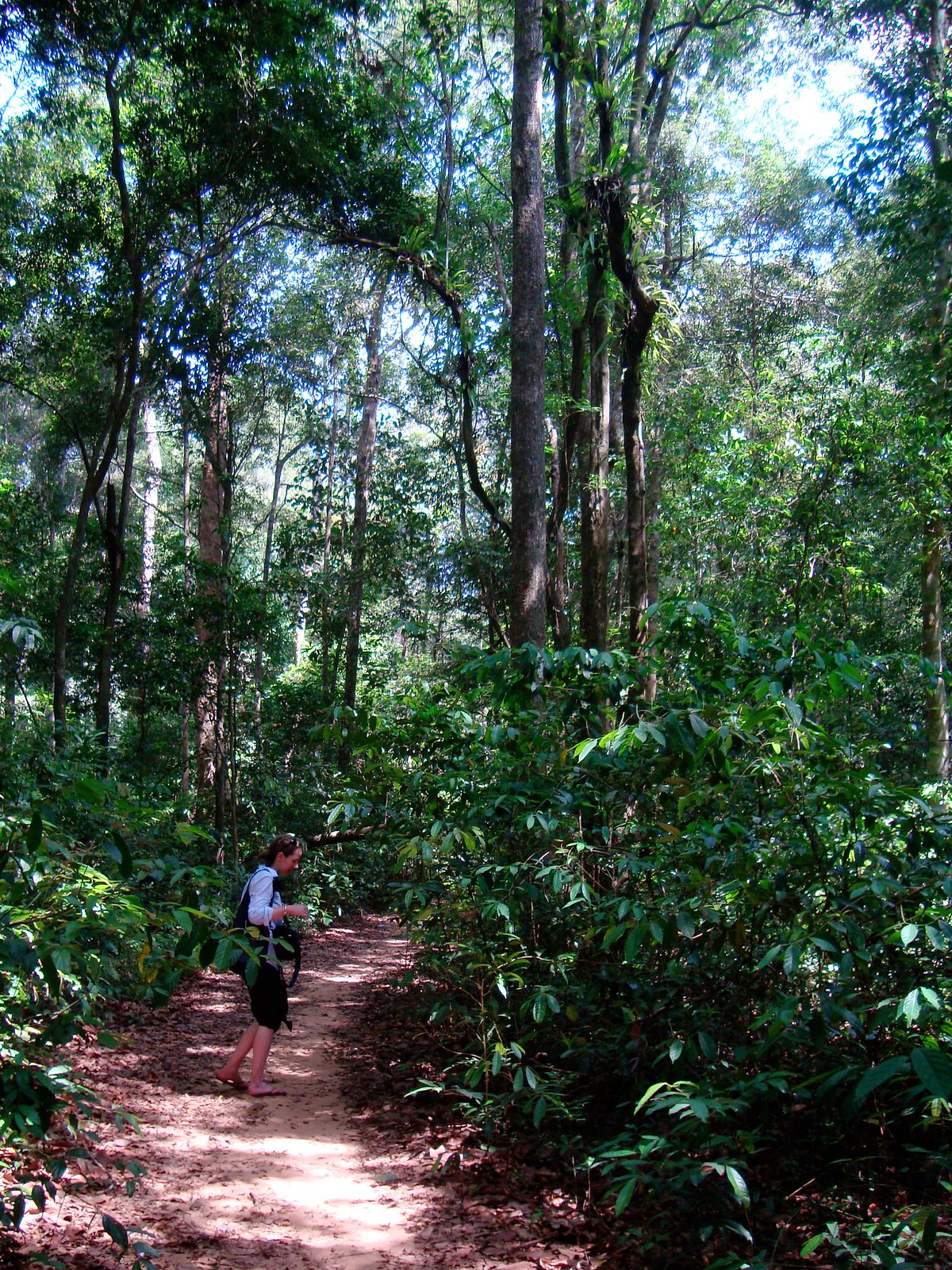 Hiking in Phu Quoc National Park Vietnam