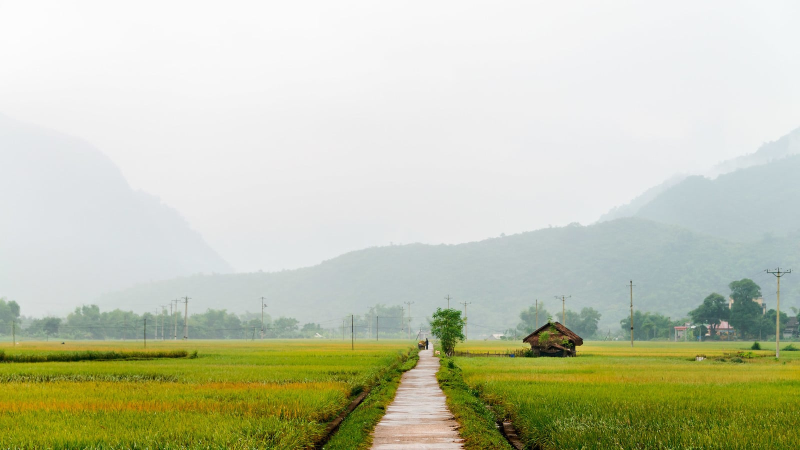 Image of a misty rain in Mai Chau, Vietnam