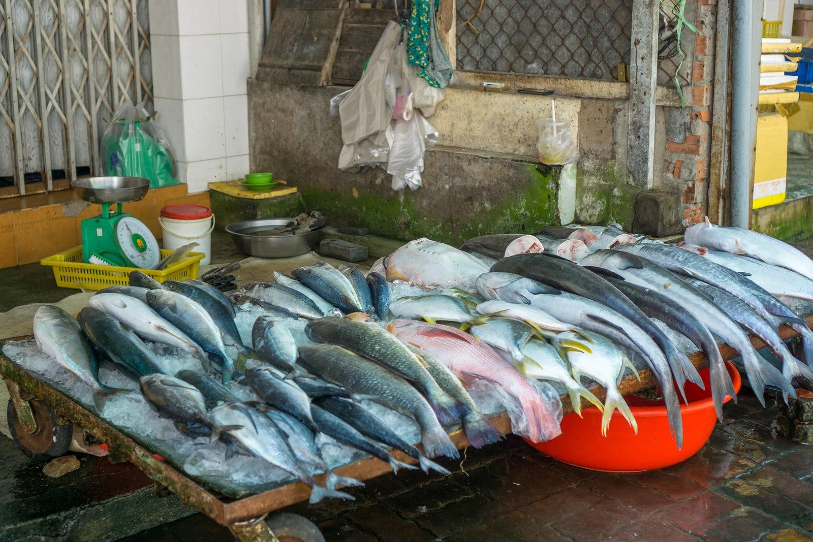 Seafood Market in Vung Tau Vietnam