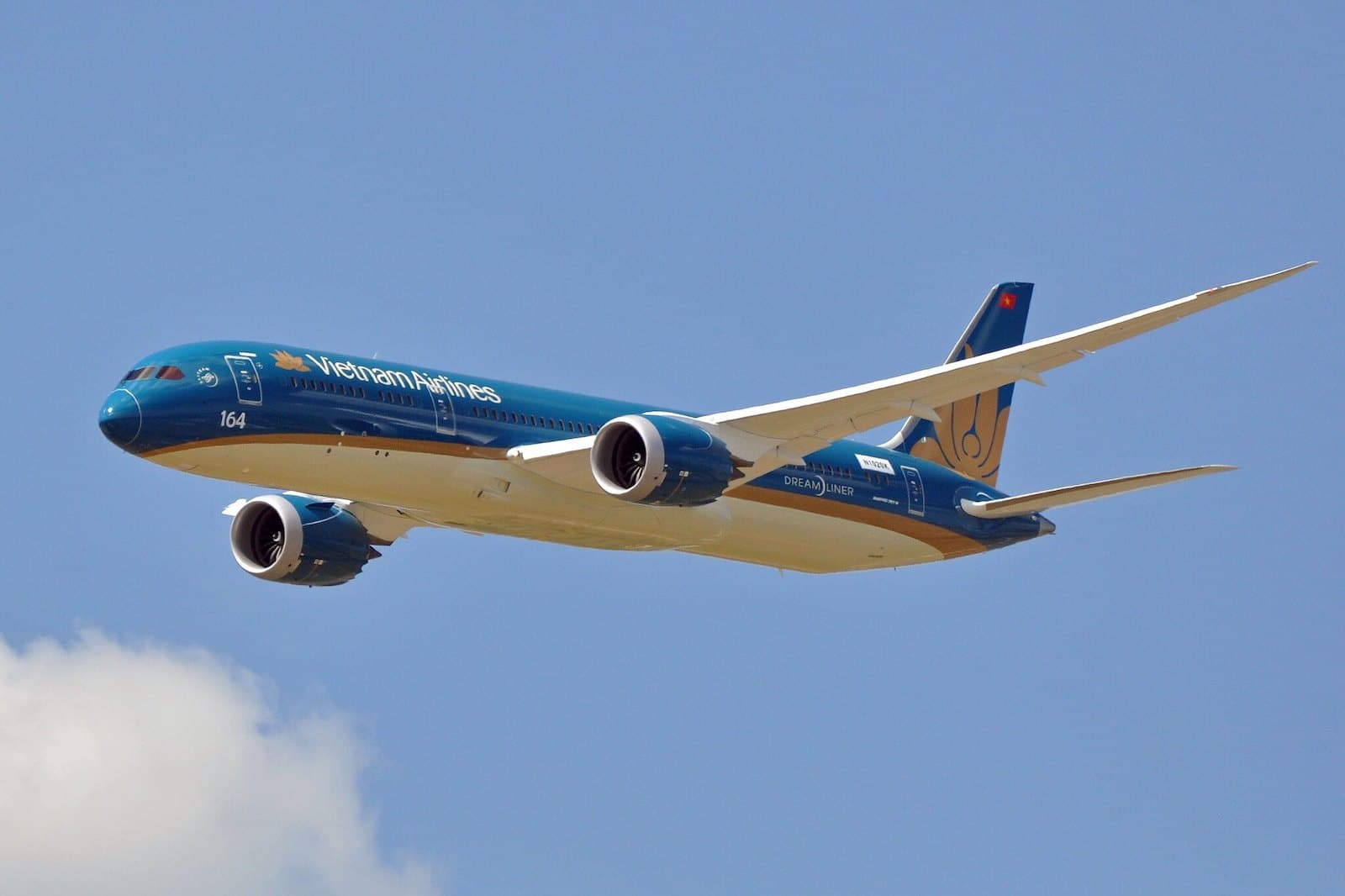 Image of a Vietnam Airlines plane in the sky