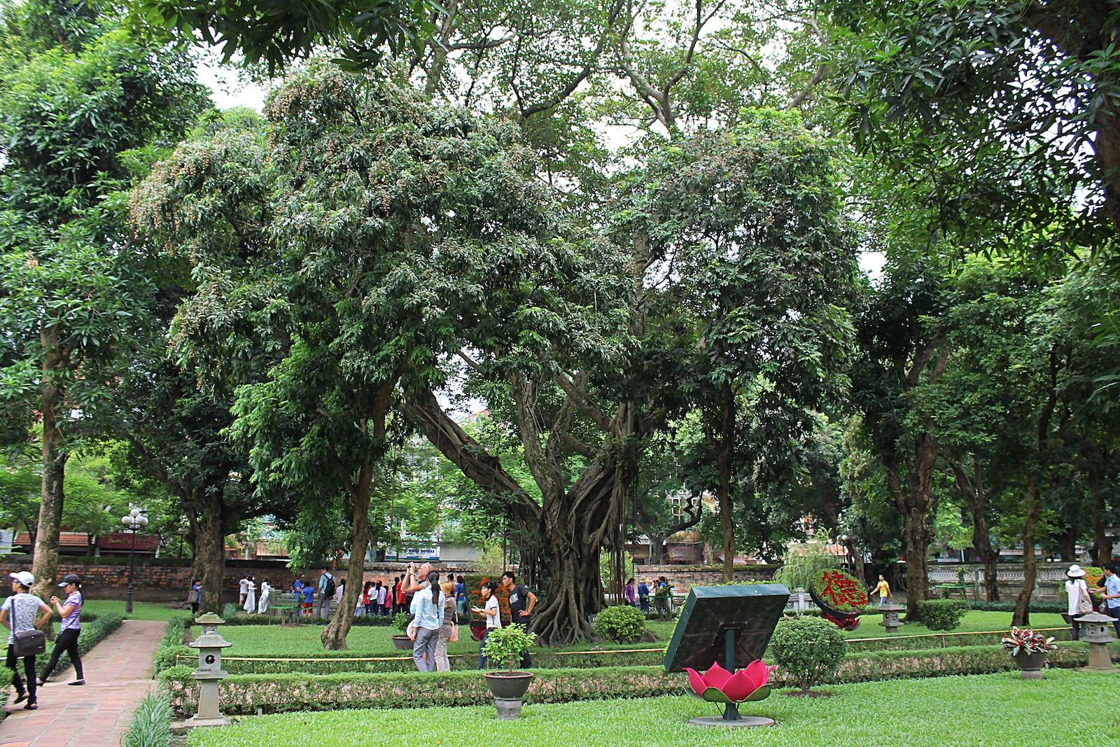 Banyan Tree Hanoi Vietnam