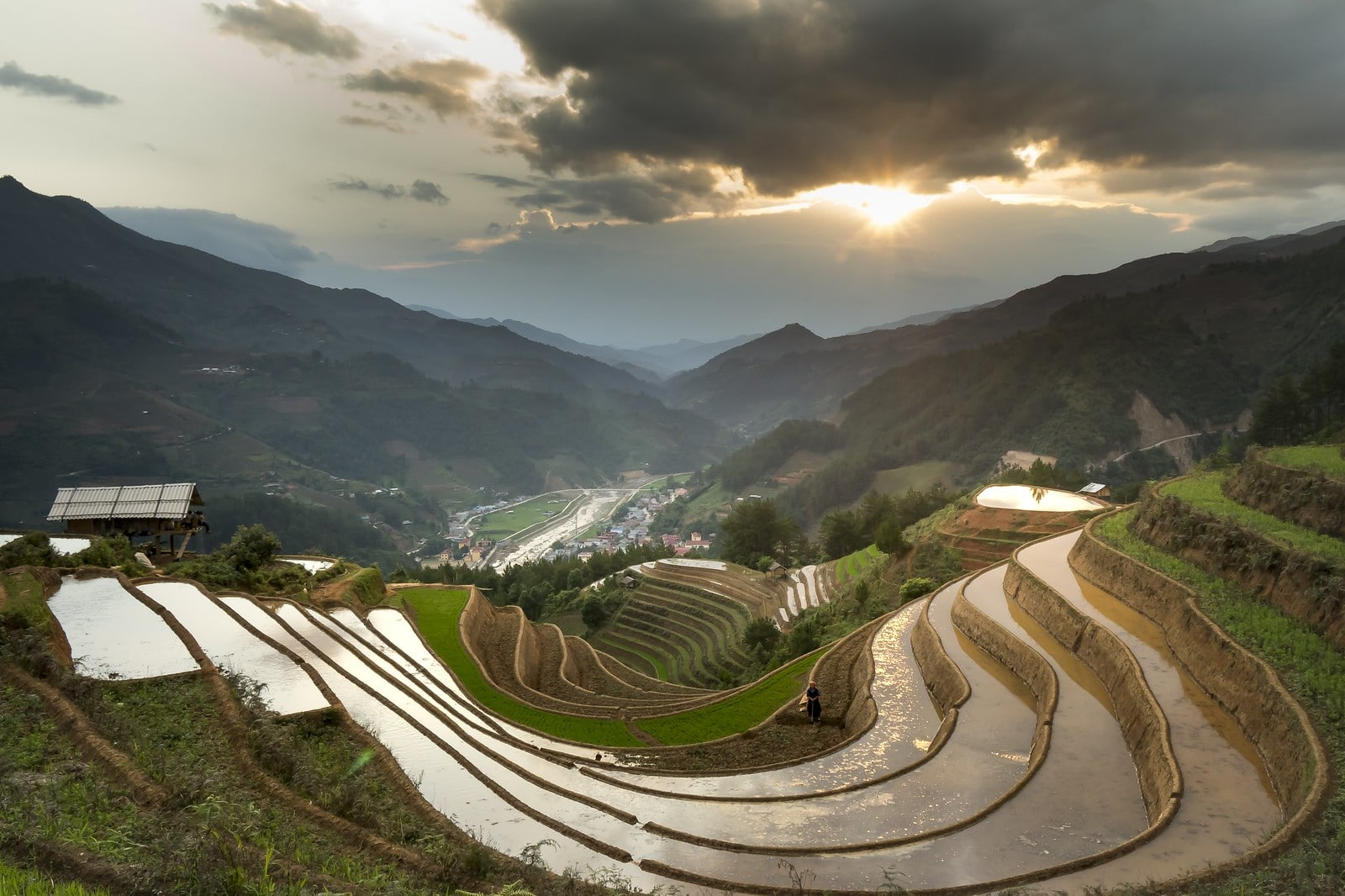 Rice Terraces in the Ha Giang Province Vietnam