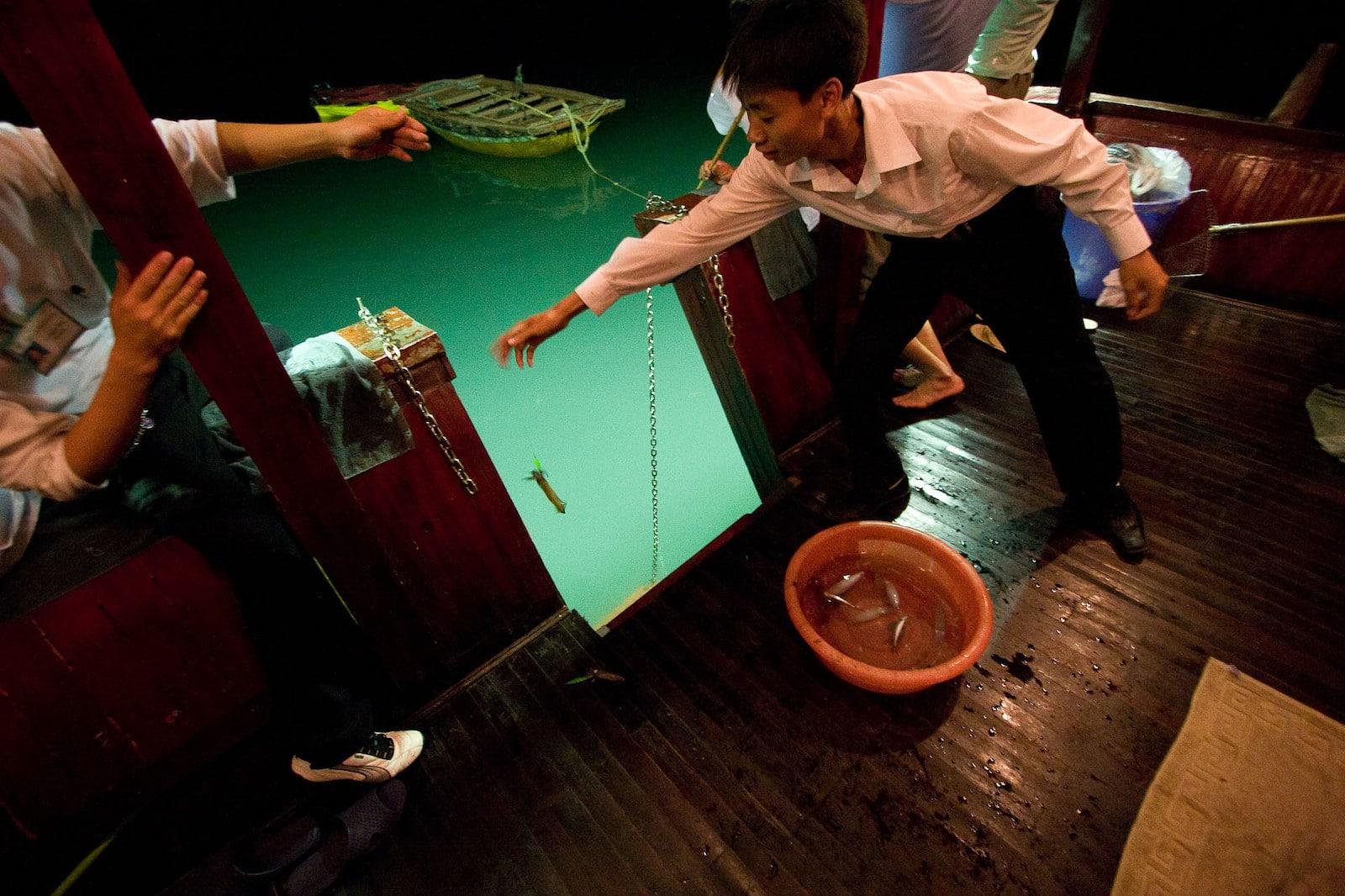 Squid Fishing, Ha Long Bay